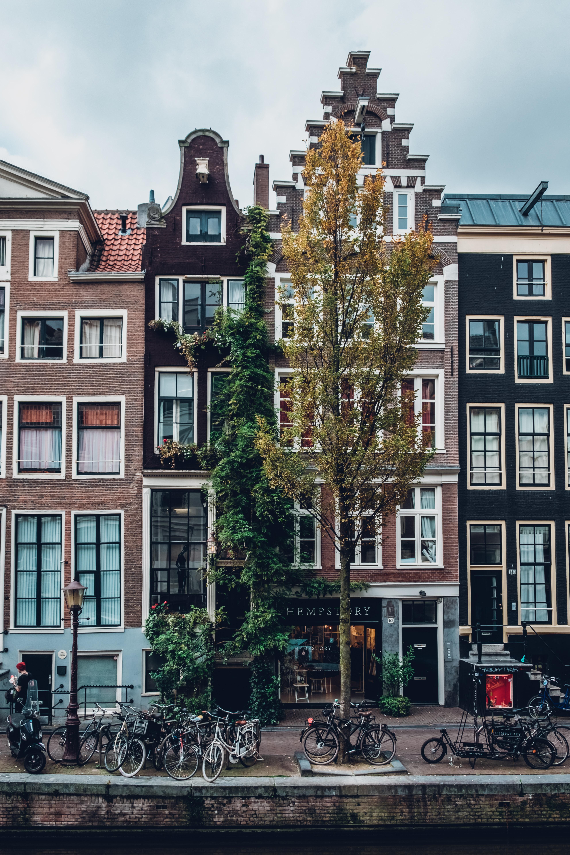 Sobre Amsterdam