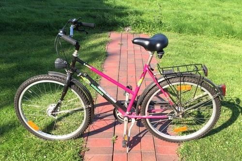 Winora Holland Damenrad bike rental in Achterstadt