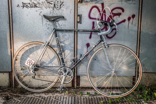 Bottecchia Belinda bike rental in Rosenheim