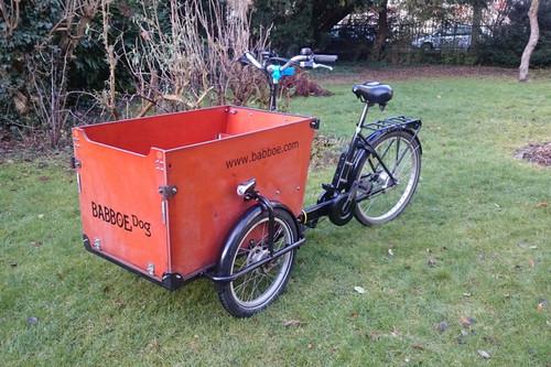 Babboe Dog bike rental in Lübeck