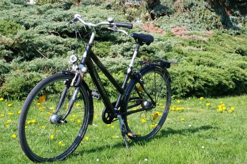 pegasus pegasus bike rental in Taucha
