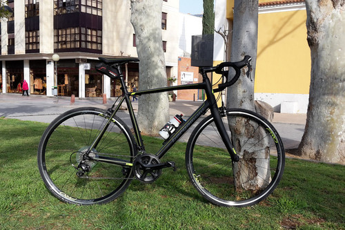 Alquiler de bicicletas Bergamont Prime 7.0 en Murcia