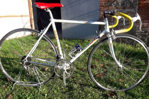 Alquiler de bicicletas Daccordi Daccordi Bianca I M en Orentano-Pisa