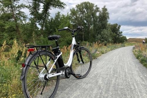Telefunken RC766 bike rental in Ginsheim