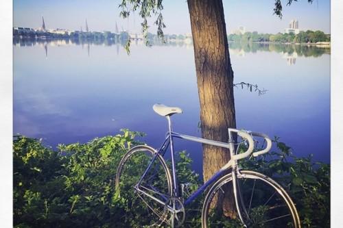 Alquiler de bicicletas Pinarello Asolo en Hamburg