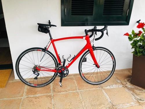 Ridley Fenix SL 2019 Lotto Soudal Team Bike bike rental in Puerto de la Cruz, Tenerife