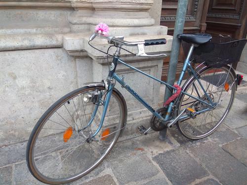 Location vélo Puch Covette à Wien
