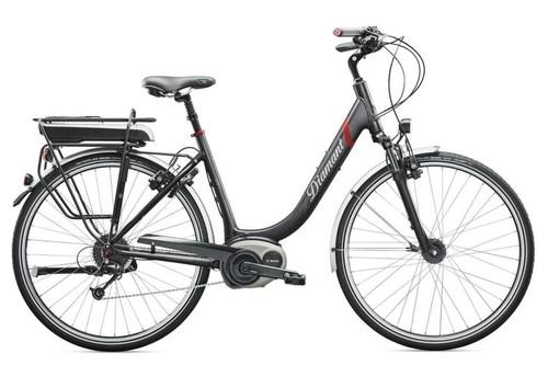 Diamant Elan + bike rental in Riedering