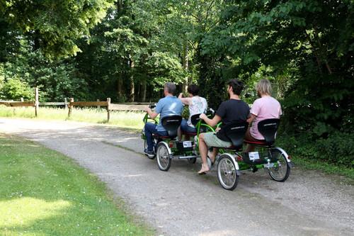 VanRaam 4er grün 4h bike rental in Raesfeld