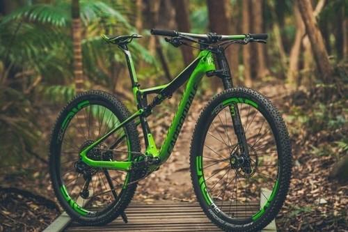 CANNONDALE Carbon bike rental in Bergen aan Zee