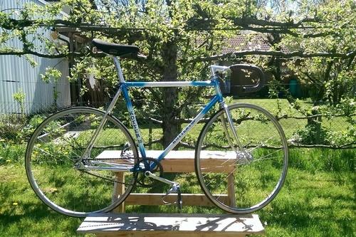 Kotter Albrune bike rental in Rosenheim