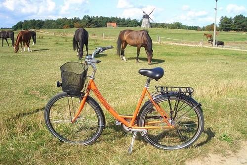 Mietrad-Usedom Citybike 7-Gänge bike rental in Seebad Ahlbeck