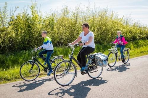 Batavus/Gazelle City bike bike rental in Ouddorp
