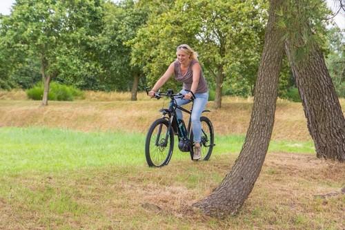 Segway E-mountainbike bike rental in Ouddorp