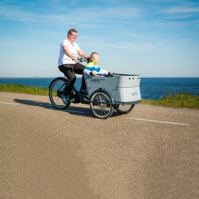 Babboe Curve Mountain auto bike rental in Ouddorp