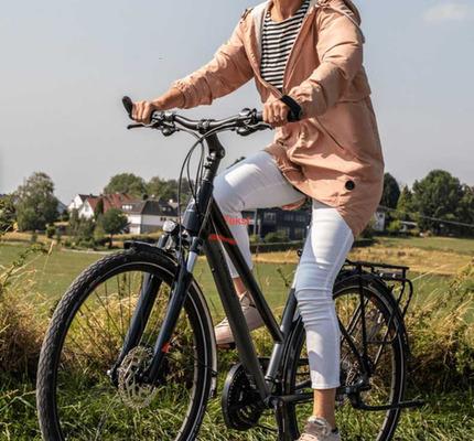 Pegasus Piazza bike rental in Almere