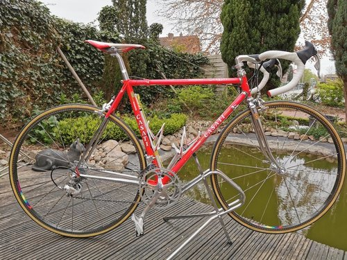 Casati Monza bike rental in Schortens