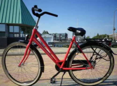 Aldo Pedal Brake bike rental in Alblasserdam