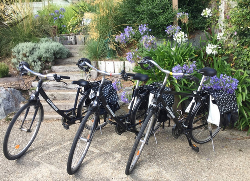 Gitane VTC - homme bike rental in Pordic