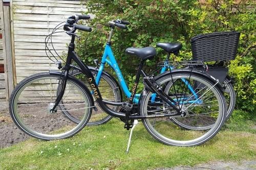 D. Gäde Nordsee Edition bike rental in Norden