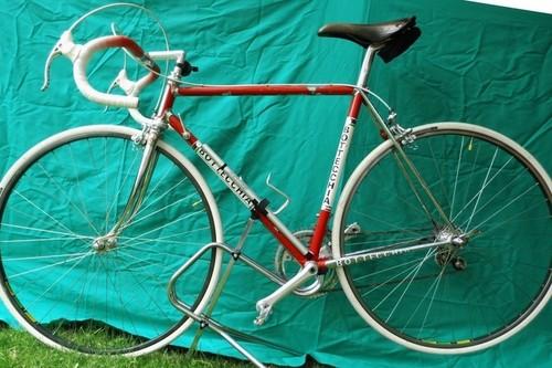 Bottecchia Professionale bike rental in Schortens