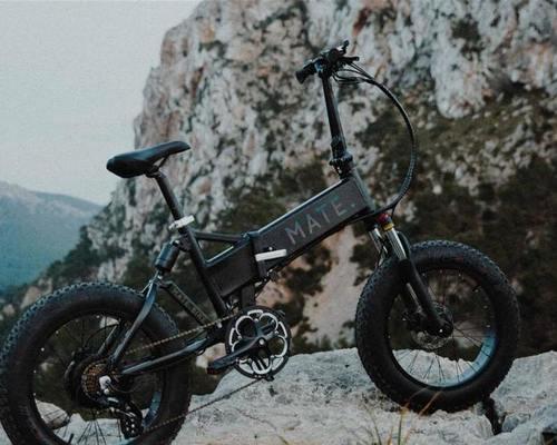 MATE Model X - 250W fietsverhuur Stuttgart