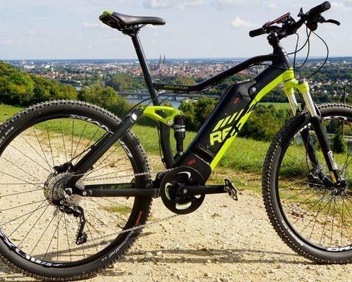 Rex Graveler e8.9 bike rental in München