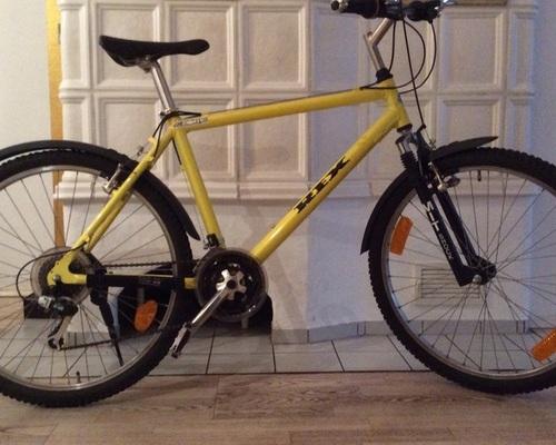 REX ZONIC bike rental in Offenbach
