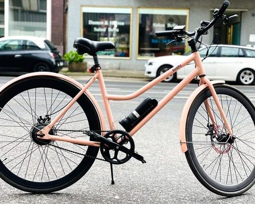 SUSHI Bikes California Roll C2 Verleih in Düsseldorf