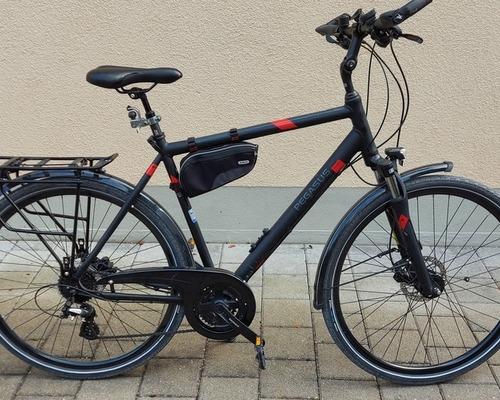 Pegasus  Solero SL Disc bike rental in Germering