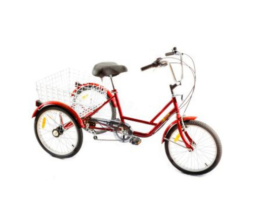Arcade Tricycle bike rental in Arzon