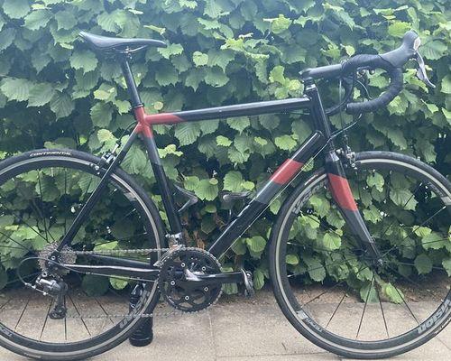 Dynamics Prolog RS bike rental in Erlangen
