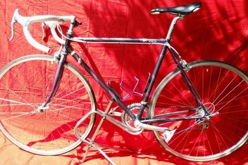 Benotto Ralf Jantsen bike rental in Schortens