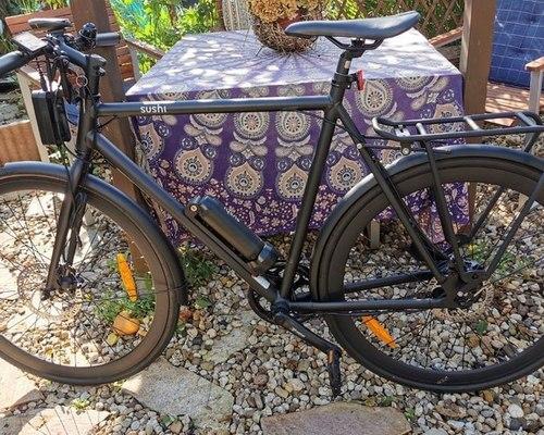 SUSHI Bikes Maki M1 bike rental in Bonn