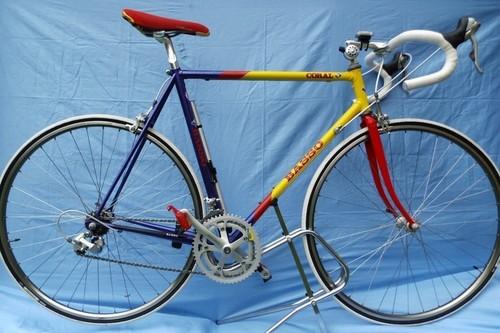 Basso Coral bike rental in Schortens
