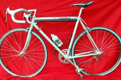 Bianchi Caurus 945 bike rental in Schortens
