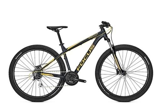 Alquiler de bicicletas Focus I M WHISTLER ELITE en Corralejo